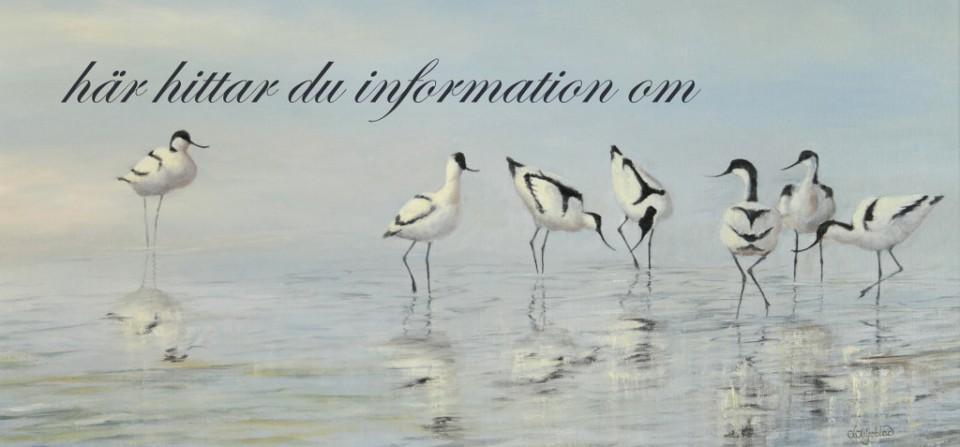 Här får du informatin om