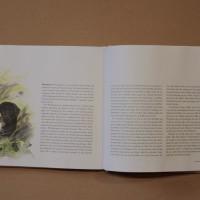 Hundboken 2