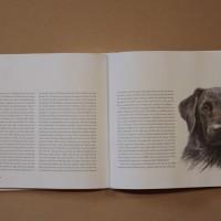 Hundboken 6