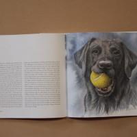 Hundboken 7