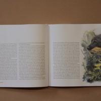 Hundboken 11