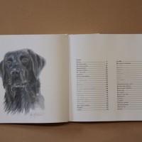 Hundboken 13